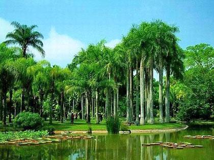 欧式美丽绿化景点图片
